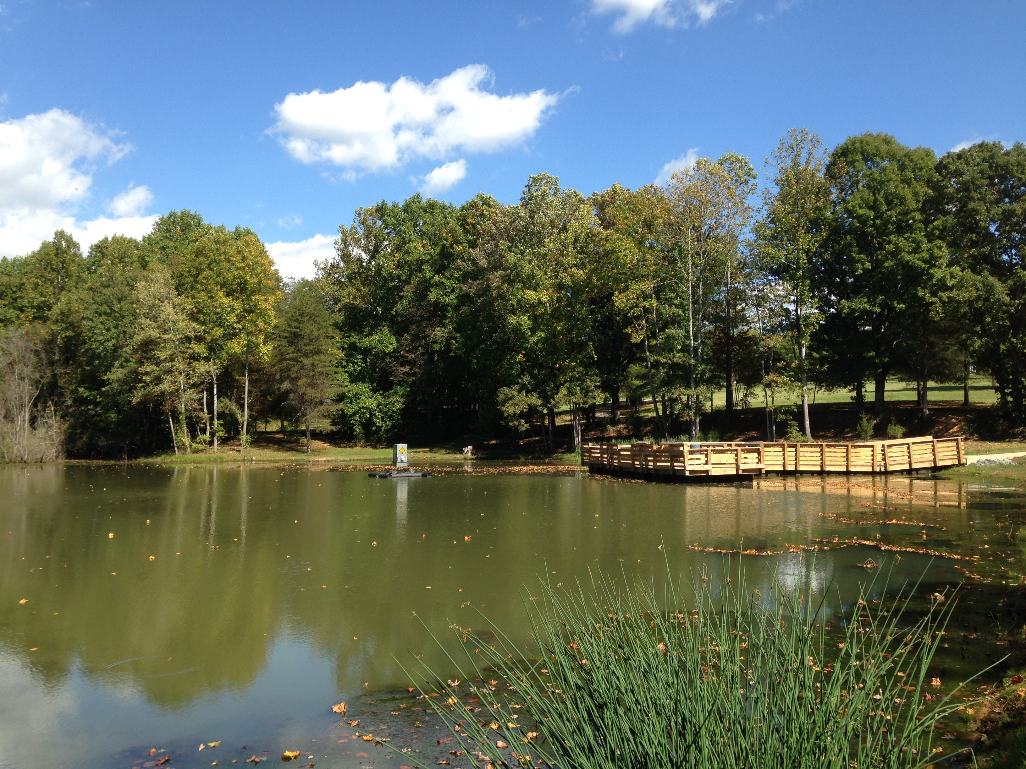 FISHING POND 2.jpg